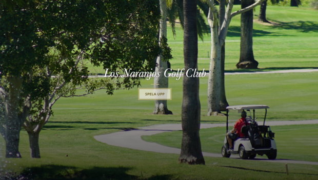 Bloggbild golf